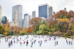 Central Park Ice Skating at Wollman Rink and Uptown Hop-on Hop-off Tour