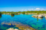 Cenotes and Paradise Lagoon with Snorkeling from Playa del Carmen