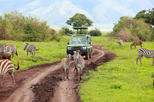 6 Days Southern Tanzania guided tour from Dar-Es-Salaam