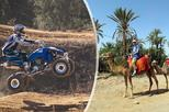 Africa & Mid East - Morocco: Half Day Camel Ride and Quad Bike in the Palmeraie