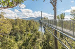 Huon Valley Small-Group Tour from Hobart
