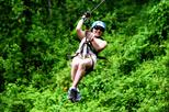 Arenal Volcano Full-Day Combo Tour with Lunch and Dinner