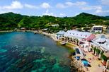 Best of Roatan Free Style Island Tour