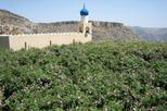 9-Hour Jabal Akhdar Green Mountains Tour