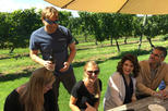 Long Island Wine Tour from NYC - Day Trip: Meet the Winemakers, Taste Food and Wine