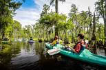 Discovering Manchac Swamp a Local Guided Small Group Kayak Tour