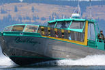 Nanaimo Whale Watching in a Semi-Covered Boat