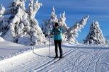 Cross-country skiing lesson in Lillehammer