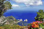 Capri Day Cruise from Sorrento