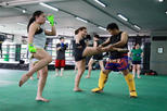 Muay Thai (Thai boxing) Lesson With Private Transfer From Bangkok
