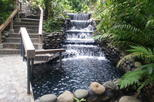 Arenal Volcano Hike & Hotsprings Tours