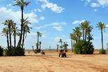 Africa & Mid East - Morocco: Camel and Quad Biking Tour from Marrakech