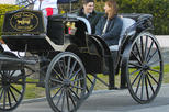 Charleston's Private Old South Carriage Evening Tour