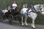 Charleston's Private Old South Carriage Tour
