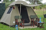 Chobe National Park Camping Safari From Victoria Falls (1 Day and 1 Night)