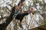 TreeUmph! Adventure Course