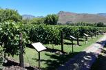 HALF DAY CPT PRIVATE WINE TOUR DRIVE