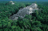 Calakmul Archaelogical Zone and Reserve Day Trip from Palenque