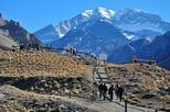 Private Day Trip to Aconcagua Park, Inca's Bridge & Inca's Lagoon from Santiago