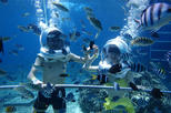 Bali Ocean Walker with Uluwatu Tour and 2 Hour Spa Including Romantic Dinner