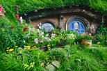 Hobbiton Movie Set Tour & Transfers from Auckland