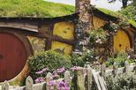 SUPER DEAL-Hobbiton Movie Set Tour & Transfers from Auckland for 4 Adults