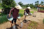 Private daytrip to Experience Hoi an Rural Eco Tour  from  Hoi An or DaNang city