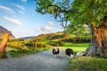 4 day York, Durham and the Lake District tour