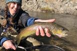 Solo Angler's Private Full Day Fly Fishing Adventure