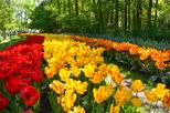 Day trip to Keukenhof Garden and Flowerfields from The Hague
