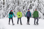 Grouse Mountain Snowshoe Rental & Mountain Admission