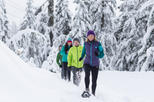 Grouse Mountain Snowshoe Rental