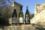 Small-Group Full-Day Private Wine Tour from Avignon