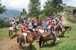 Coffee Tour In Horse Riding In Medellin