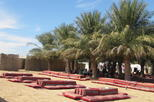 Bedouin Desert Camp Safari and Activities from Abu Dhabi Including Dune Bashing and BBQ Dinner
