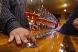 Shore Excursion: Napa and Sonoma Ultimate Wine Tasting Experience Full-Day Tour