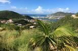 St Maarten French and Dutch Sightseeing and Shopping Tour