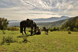 Full-Day Horseback Ride with Barbecue Lunch in the Chilean Countryside