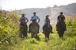 Horseback Riding at Organic Vineyard from Valparaiso