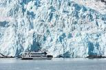 Anchorage Shore Excursion: Kenai Fjords National Park Glacier and Wildlife Cruise