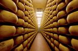 Italian Food Experience in Bologna: Parmigiano Reggiano Factory Visit, Wine and Vinegar Tasting and Lunch