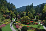 Brentwood Bay Kayak Tour and Butchart Gardens Visit