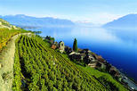 Winter tour to Montreux with optional Chaplin's world and Chillon castle from Lausanne
