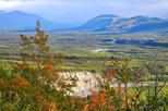 Denali National Park Walking Tour