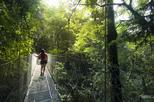 Arenal Hanging Bridges Hiking Private Tour