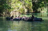 Falmouth Shore Excursion: Dunns River Falls and River Tubing Tour