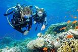 Underwater Dive Experience for Beginners in Bali