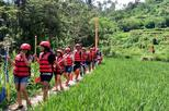 Bali River Rafting with Buffet Lunch