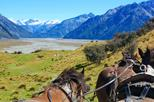 Clippity Clops Scenic Day Tour & Clydesdale Horses High Country Wagon Ride