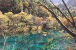 5 Days Private Tour including Chengdu Pandas-Jiuzhaigou Scenic Spot and Huanglong Scenic and Historic Area-No Shopping Stops